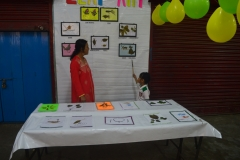 Classes 1 and 2 Presentation - Spring Fest